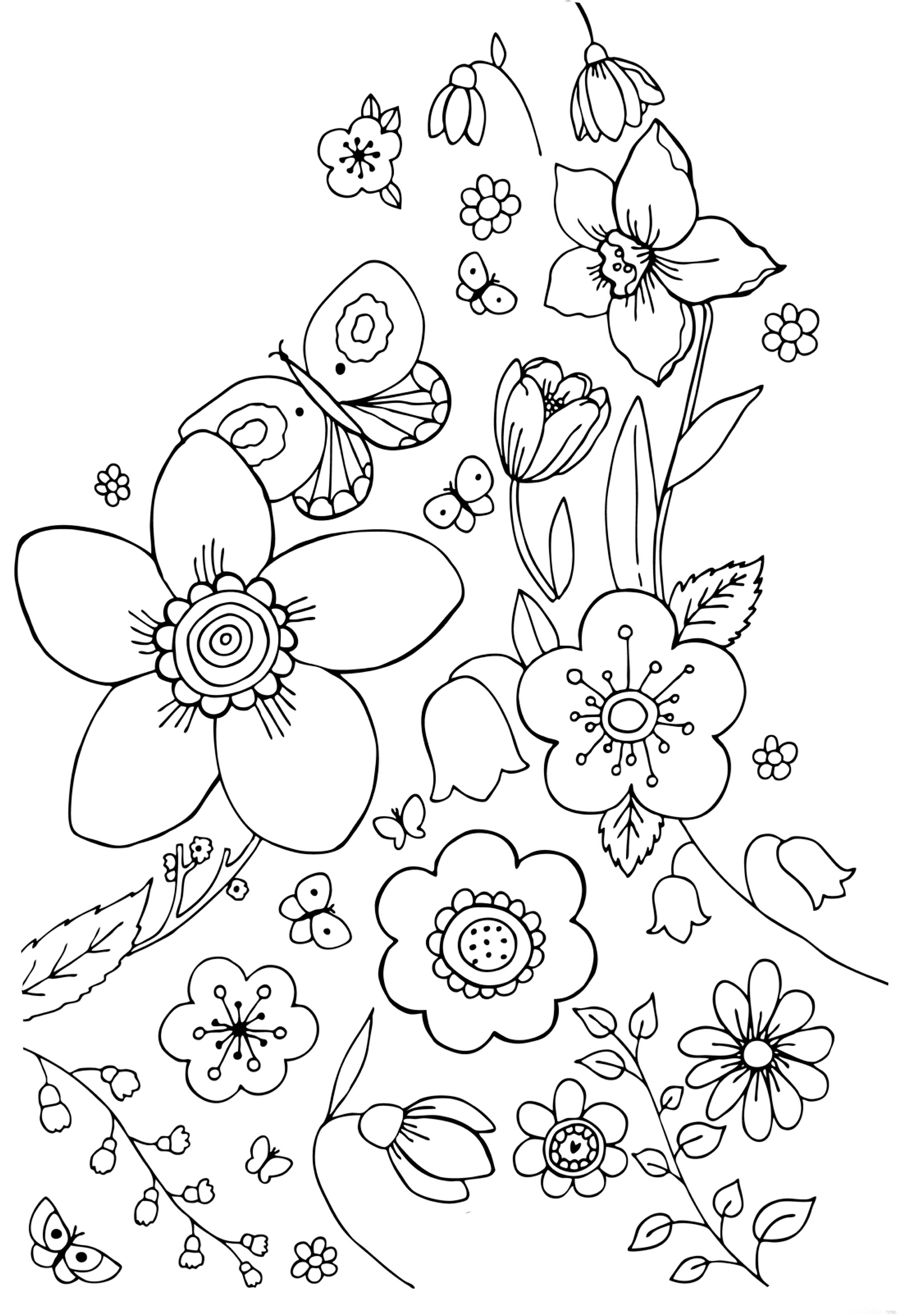 Spring Coloring Pictures  freeforkidscom